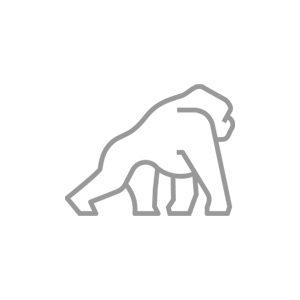 logo placeholder photo